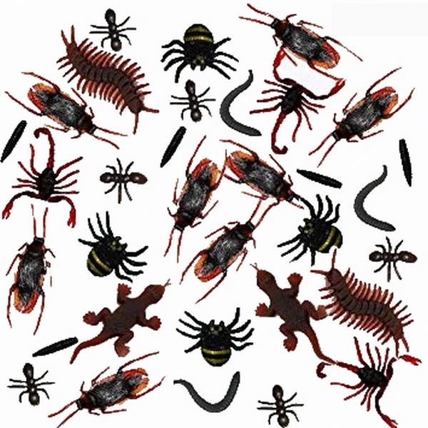 [Bild: plastik-insektennjkhx.jpg]
