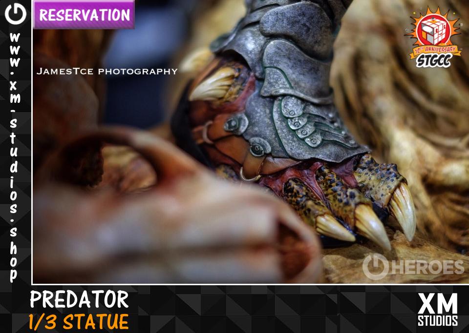Premium Collectibles : Predator** - Page 2 Pred10stqw4