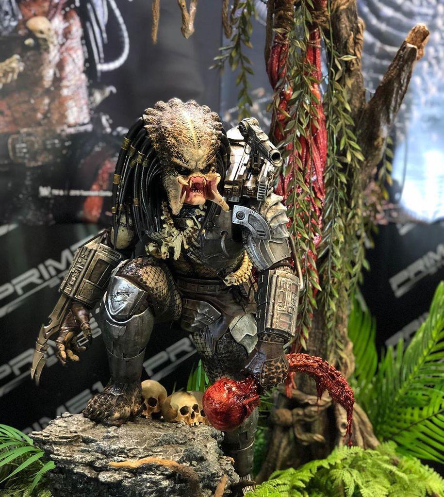 [Bild: predator38ajyr.jpg]