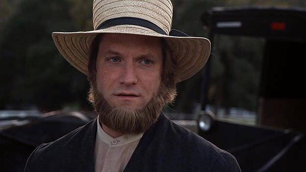 Amishlerin Merhameti Ekran Görüntüsü 2