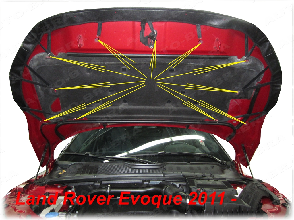 95-11 Steinschlagschutz Haubenbra Tuning CARBON Optik Bonnet Bra MG F TF Bj