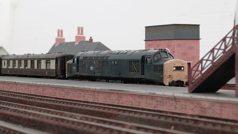Bachmann UK 00 gauge British Railways blue era diesel Sam_2673dikgs