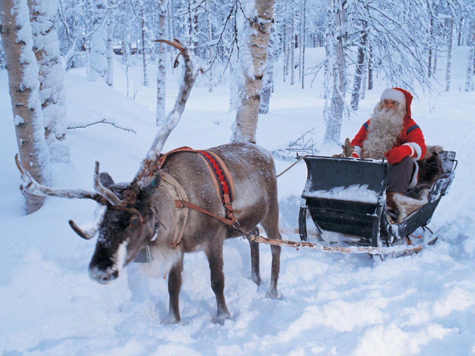 [Resim: santa-reindeer-desktoznk74.jpg]