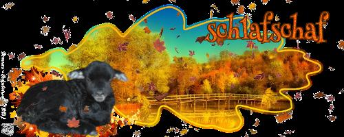 Kleiderkammer von schlafschaf65 Schlafschafherbst2017y7k96