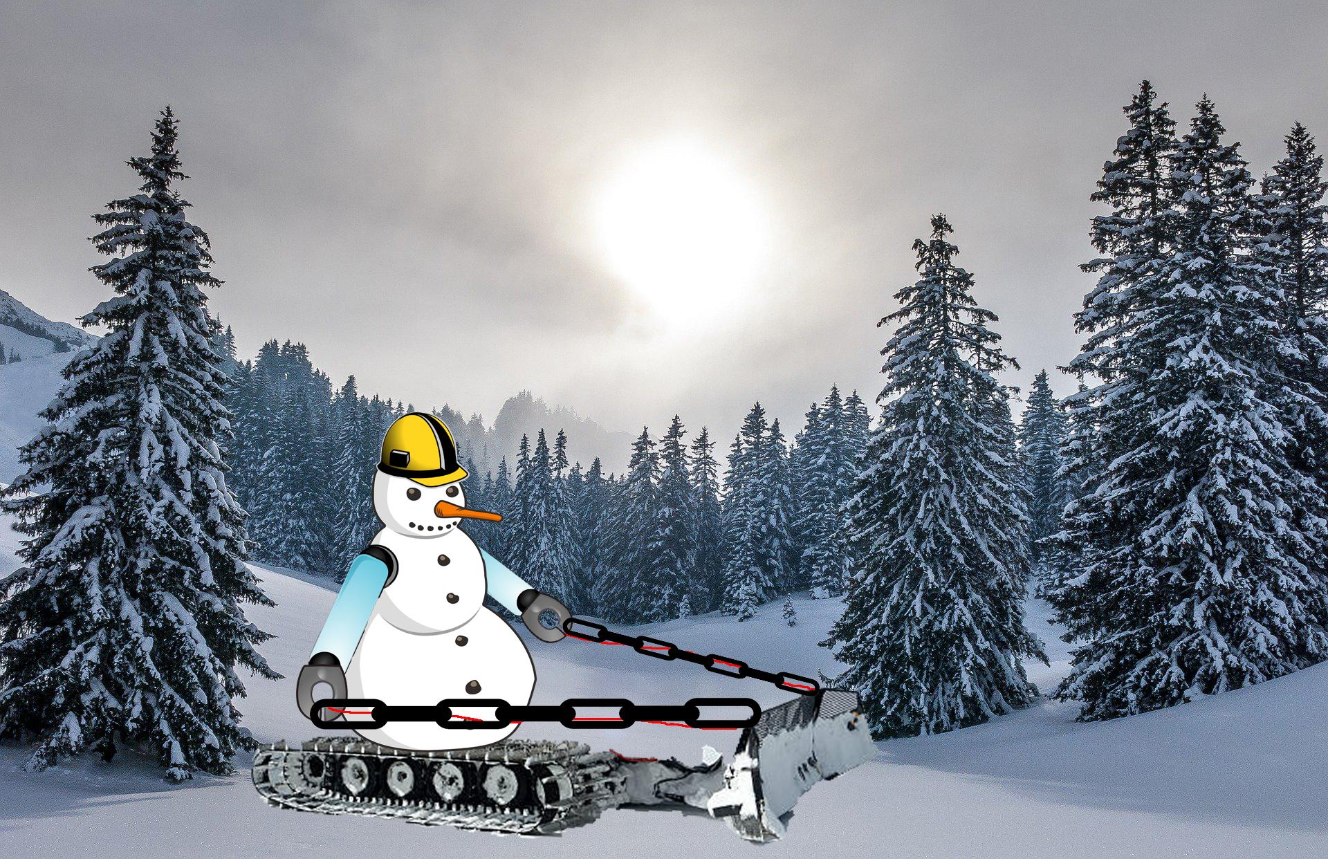 schneemann-roboter-4acij1e.jpg