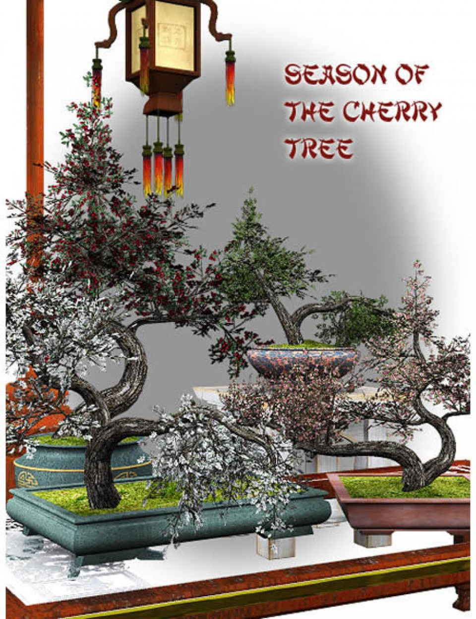 Season of the Cherry Tree