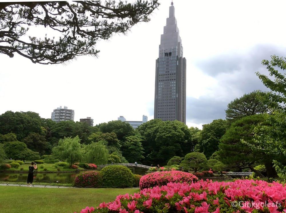Titelbild Shinjuku Gyoen