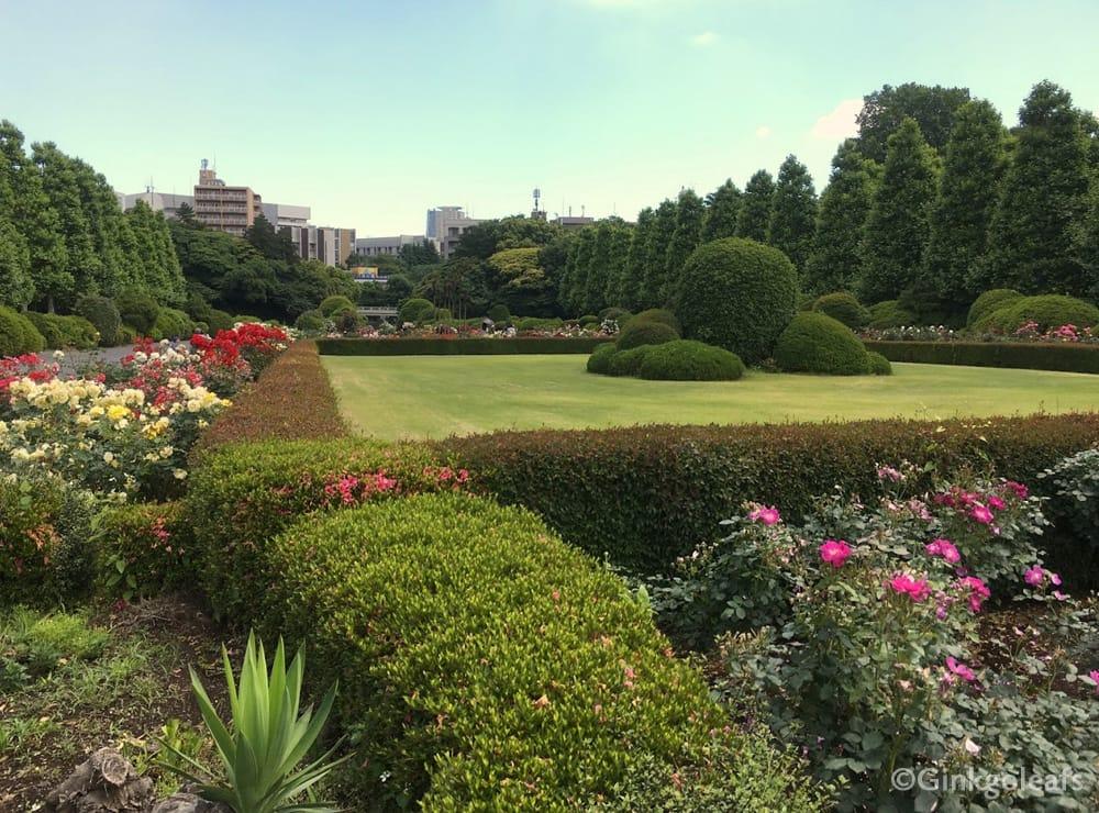 French Garden Shinjuku Gyoen