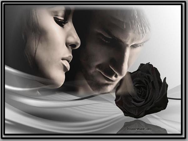 Siyah Gül Duygusal Sevgililer Grafik