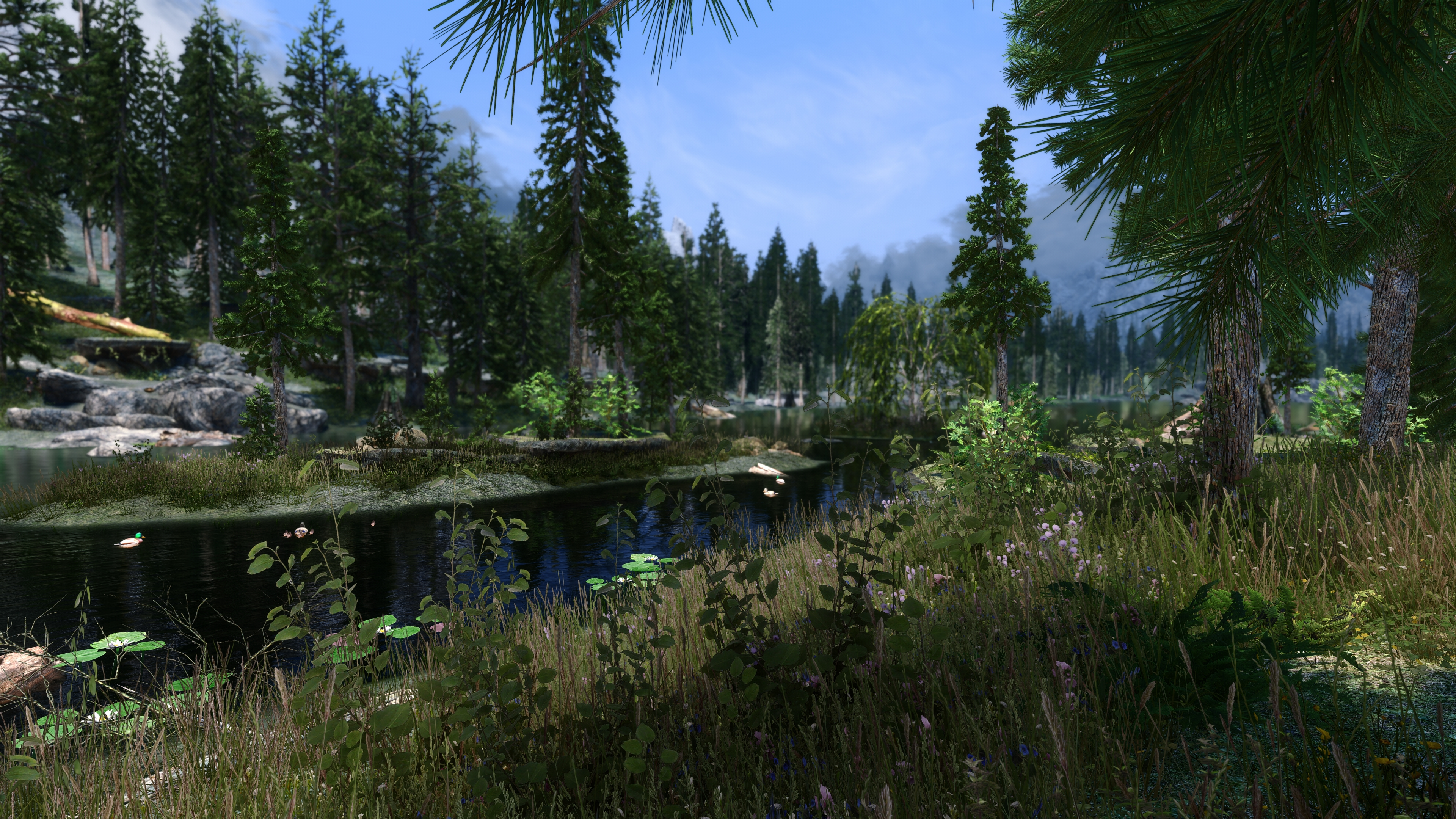 Skyrim Special Edition ( SE, Newrim ) Does it favor Single, or Multi