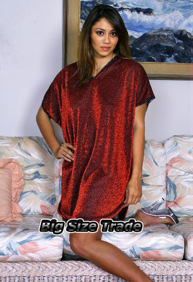 Nylon Sleepshirt 55