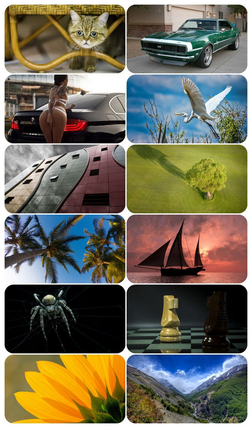 Beautiful Mixed Wallpapers Pack 916