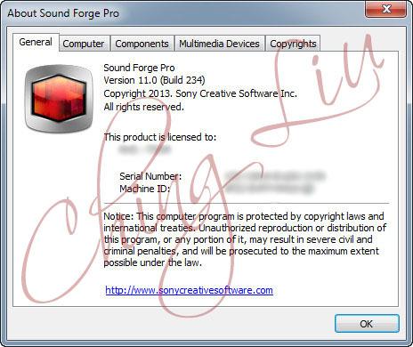 download sony sound forge pro 11 0 build 234 patch keygen di chingliu torrent kickasstorrents. Black Bedroom Furniture Sets. Home Design Ideas