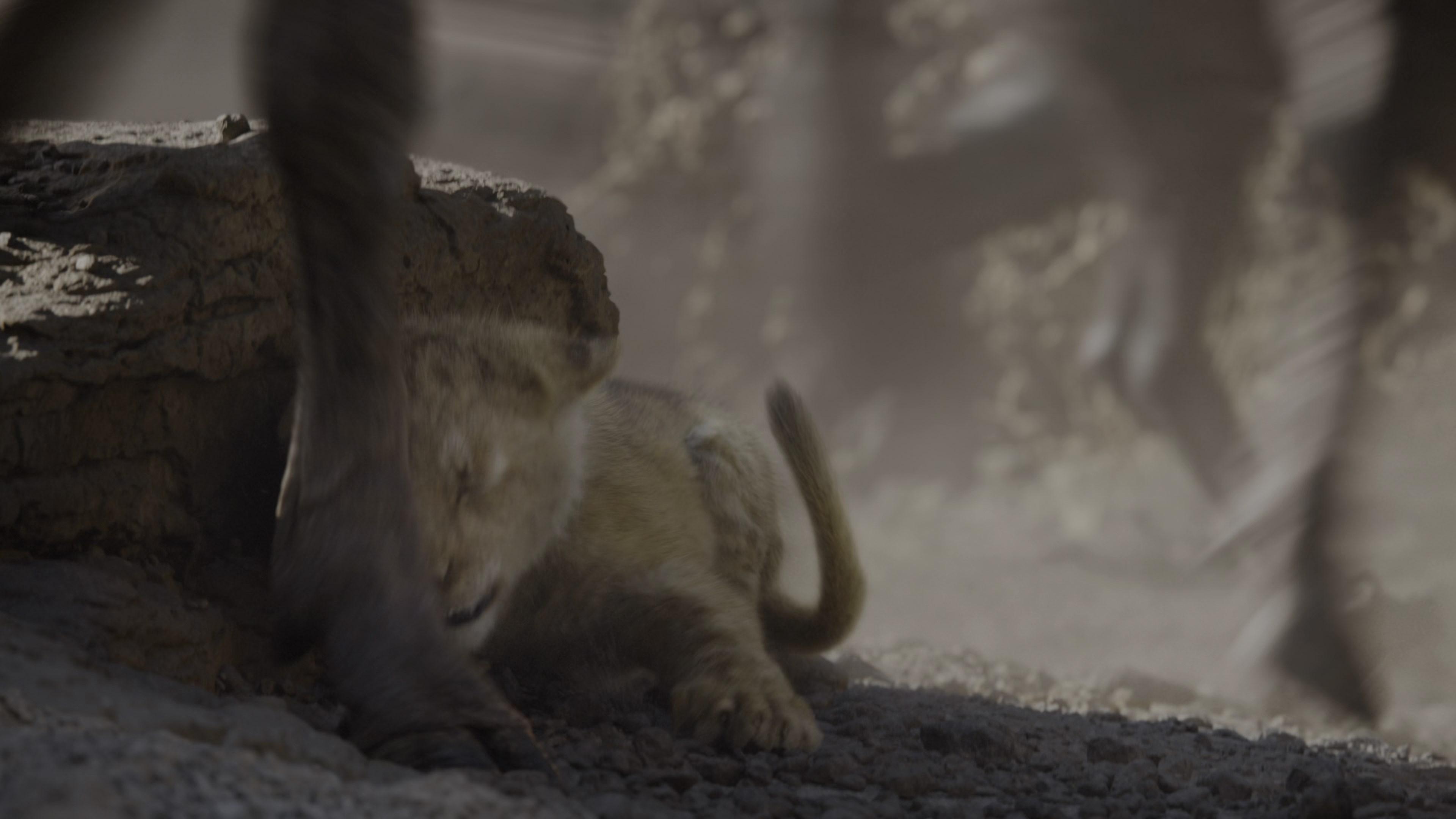 [Resim: the.lion.king.2019.213mkmb.jpg]
