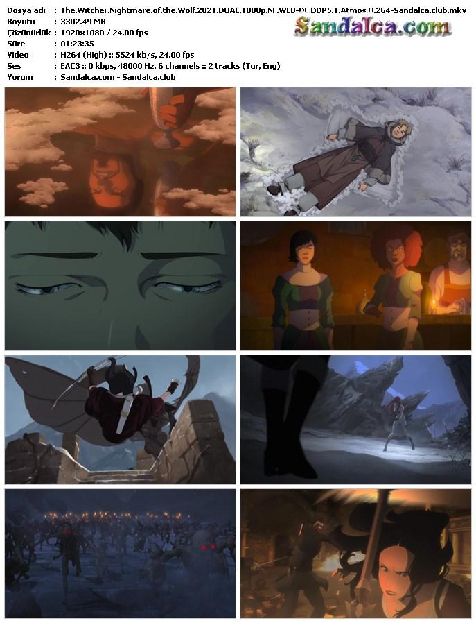 The Witcher: Nightmare of the Wolf Türkçe Dublaj indir | DUAL | 2021