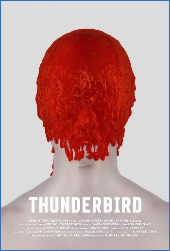 Thunderbird 2019 1080p BluRay x264-GUACAMOLE