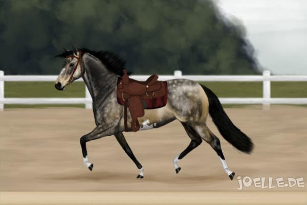 mauliges pferd welches gebiss