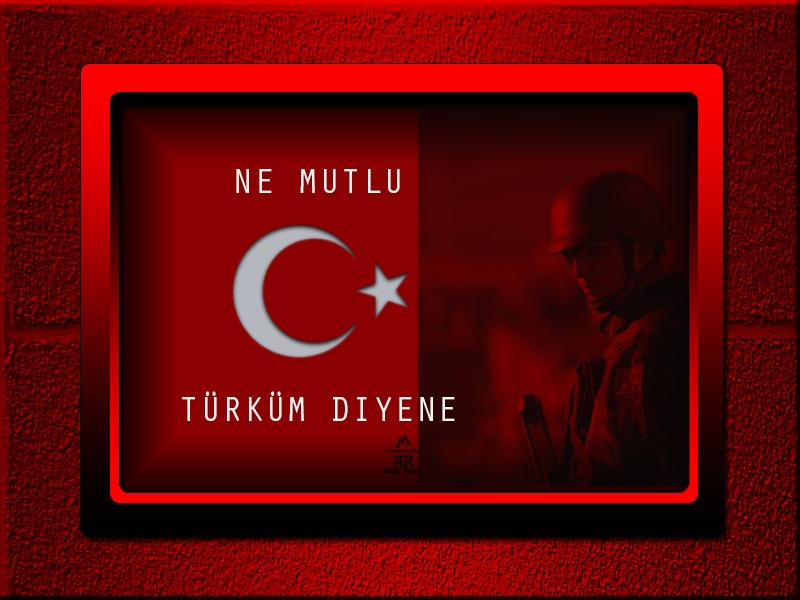 [Resim: turk_bayragi_tc_12cru2b.png]