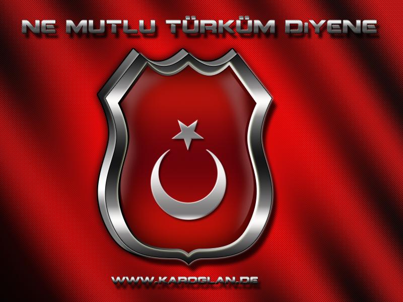 [Resim: turk_bayragi_tc_159rubk.png]