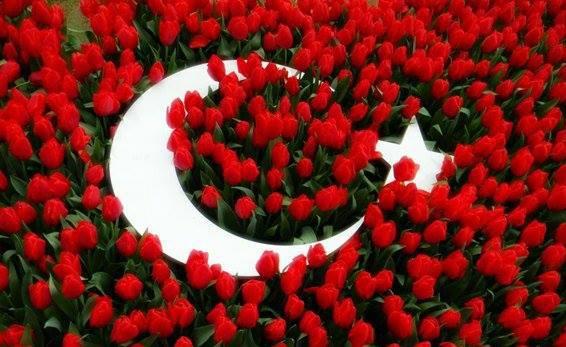 [Resim: turk_bayragi_tc_20vyulc.jpg]