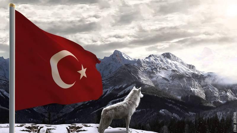[Resim: turk_bayragi_tc_3420ujz.jpg]