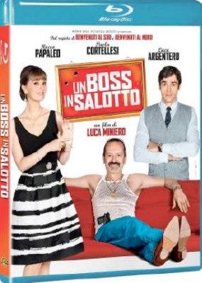 Un boss in salotto (2013) BluRay Full AVC DTS-HDMA ITA
