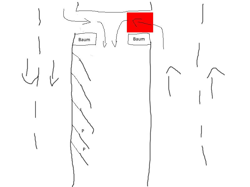 1 von 2 einfahrten wird zugeparkt stra enverkehrsrecht. Black Bedroom Furniture Sets. Home Design Ideas