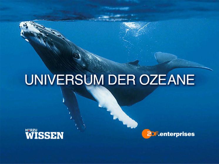 universum-der-ozeane-2ou1n.jpg