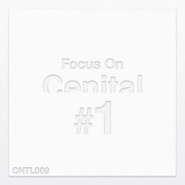 VA - Focus On Cenital Vol.1 (2018)