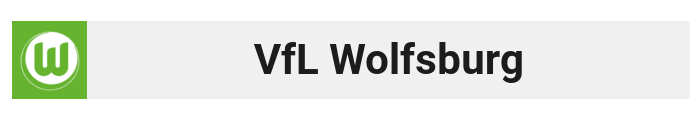 vflwolfsburguzsxe.png
