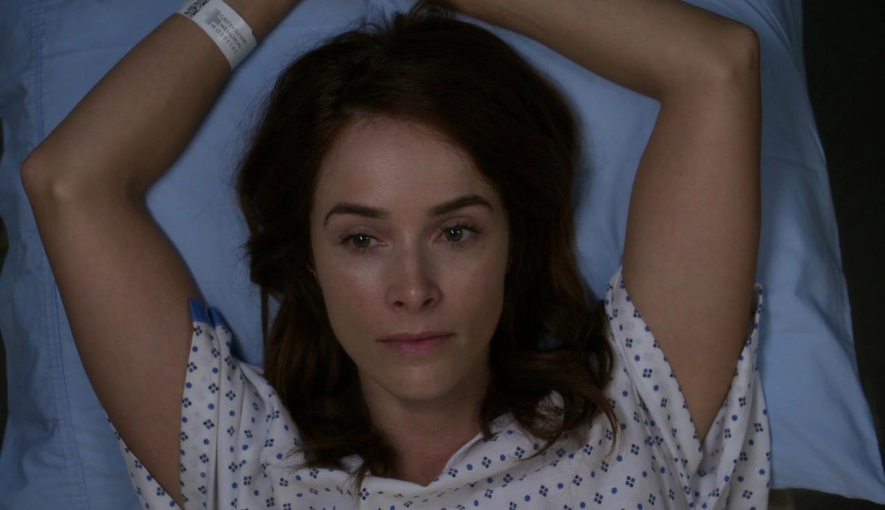 Grey's Anatomy - Stagione 14 (2017) (10/24) DLMux 720P ITA ENG AC3 x264 mkv