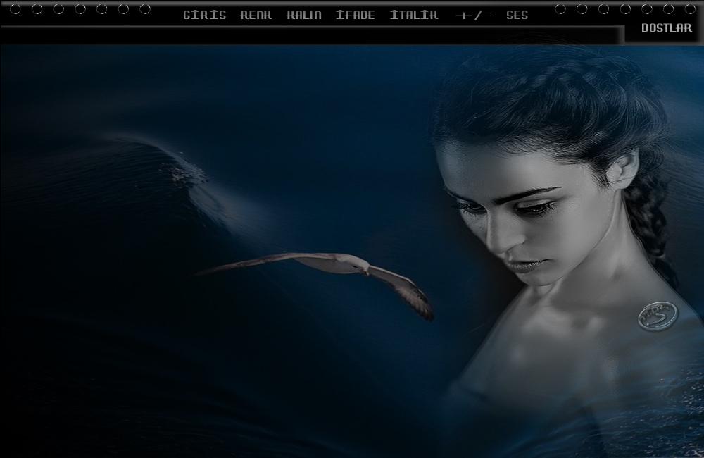 Deniz ve Martı Bayan Tema