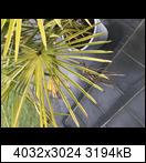 668bf649-1911-4aa4-8kgjsb.jpeg