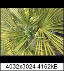 7d4e36d5-e38a-4233-bxmku8.jpeg
