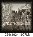 [Bild: alirasgartenmarkt2b2fe5.png]