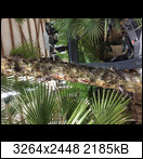 db0cd356-f3a8-4533-aoxyjy.jpeg