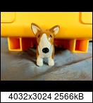 e4e27599-2bbc-4626-ak1rs5.jpeg