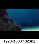 [Resim: finding.nemo.2003.10823j2j.png]