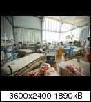 ftwd_105_jm_0529_0015jhj11.jpg