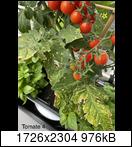 [Bild: mobile.38.shared3vj47.jpeg]