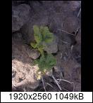 p103401_12-06-16whuij.jpg