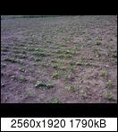 p1738_21-06-16s1u6f.jpg