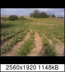 p1840_26-06-16y8k8m.jpg